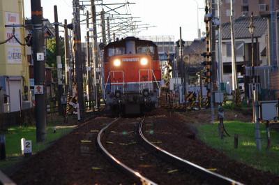 Imgp5446